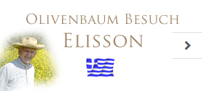Olivenbaum Besuch Elisson