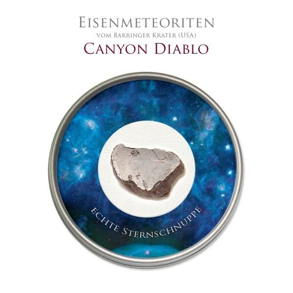 Eisenmeteorit Canyon Diablo Schnittstück