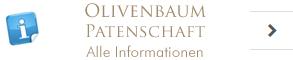Olivenbaum Patenschaft Information